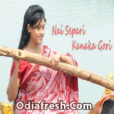 Nai Separi Kanaka Gori (2013)