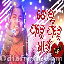 Tor Pachhe Pachhe Dhain Again - Latest new Sambalpuri Romantic Song (Harendra Jagat)