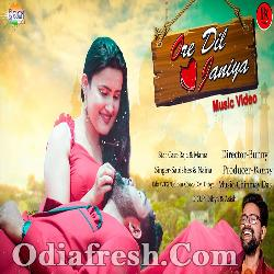 Ore Dil Janiya - Romantic Odia Song By Sabishes, Neina