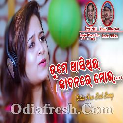 Tume Aasithila Jibanare Mora - Odia New Sad Song By Amrita Nayak