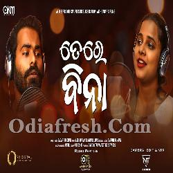 Tere Bina - Odia Romantic Song