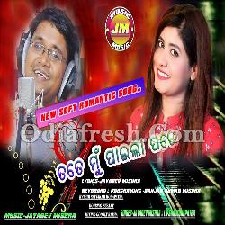 Tate Mu Paila Pare - Soft Romantic Odia Song