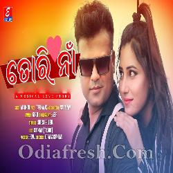 Tori Naa - Odia Album Song
