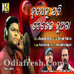 Hrudayaku Jadi - New Odia Sad Song By Karunakar