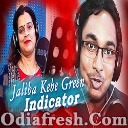 Jaliba kebe Green Indicator - Odia New Masti Song (Malay Ranjan, Nishi Nanda)