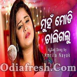 Muhan Modi Chaligalu - New Odia Sad Song (Amrita Nayak)