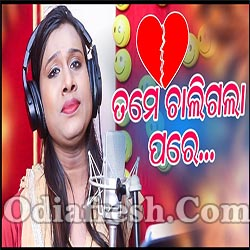 Tame Chali Gala Pare - Odia New Sad Song (Ayesha Behera)