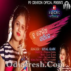 Tu Pheriya Sathire - Sital Kabi - Odia New Sad Song